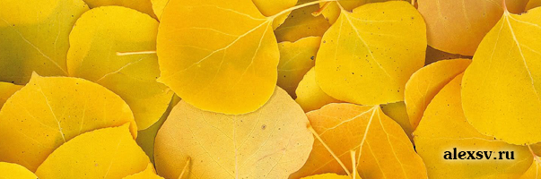 коммуникативные функции жёлтый цвет
