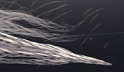 Интересные 3D визуализации движений олимпийских спортсменов