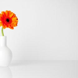 Минимализм в дизайне и несколько советов по упрощению сайта